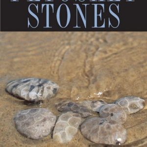 complete guide to petoskey stones book