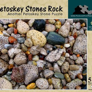 Petoskey Stones Rock