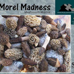Morel Madness