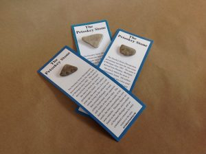 petoskey stone on card