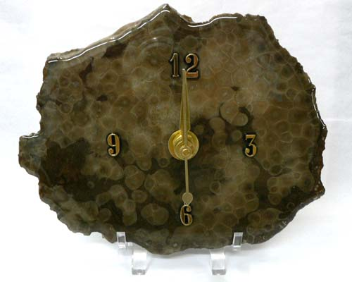 Petoskey Stone wall Clock