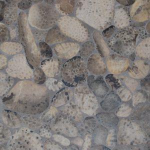Petoskey Stone Tile
